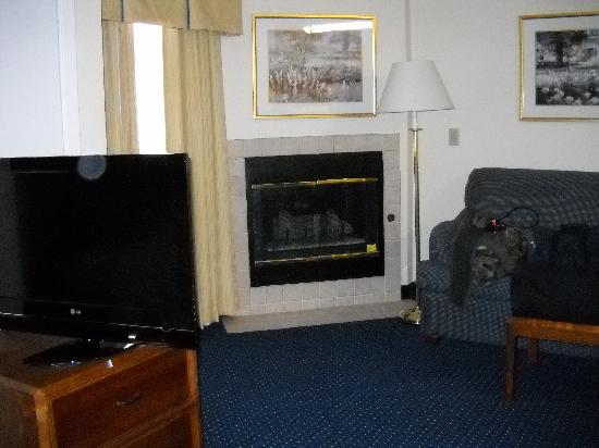 Residence Inn New Orleans Metairie: room with fireplace