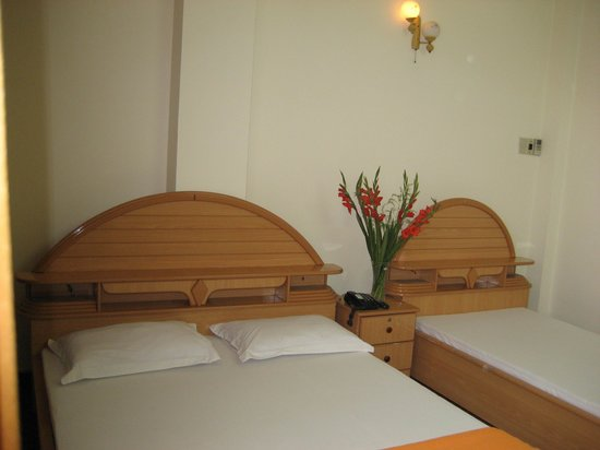 Hoang Linh Hotel: 1 double bed. 1 single bed