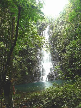 Hidden Valley Inn: Wasserfall