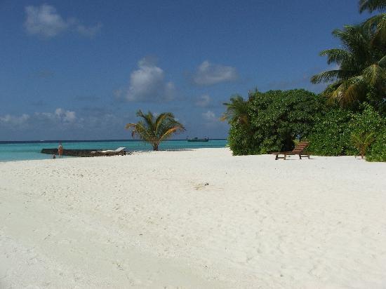 Maafushivaru : Spiaggia davanti alla mia camera