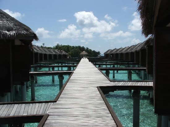 Maafushivaru : water villas