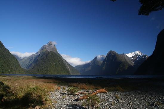 Milford Sound land view