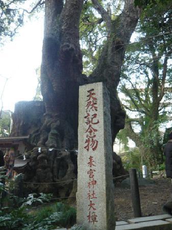 Kinomiya Shrine: コメントを入力してください (必須)