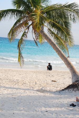 Posada Luna del Sur: Tulum beaches