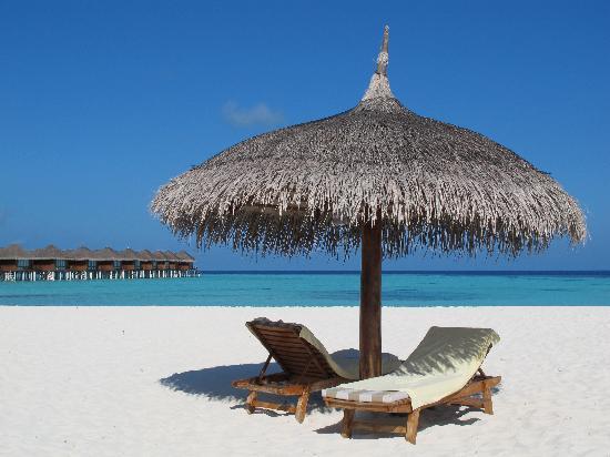 Maafushivaru : Spiaggia