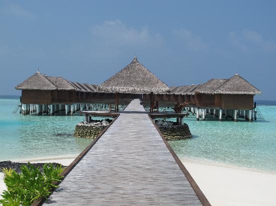 Maafushivaru : Camere overwater, pontile