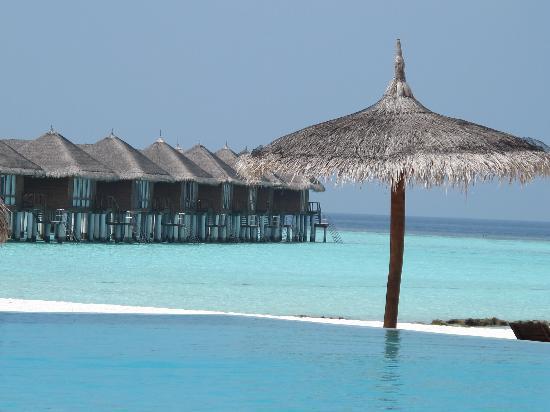Maafushivaru: Piscina,spiaggia con vista overwater
