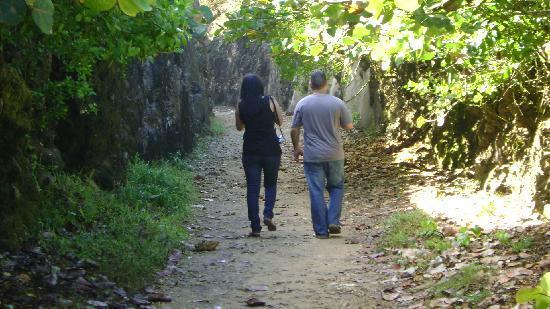 Tunel de Guajataca: pasillo luego del tunel