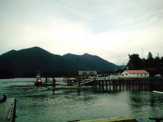 Fortune Cove: Tofino