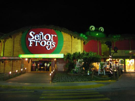 Senor Frog S Cancun Picture Of Senor Frog S Cancun