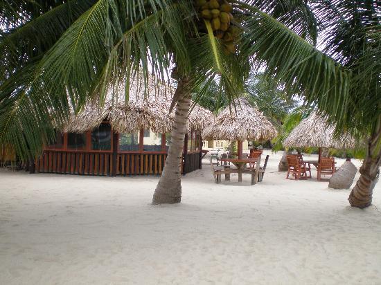 Ranguana Lodge: A restaurant only a short walk on the beach away