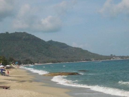 Lamai Beach : Koh Samui - Lamai