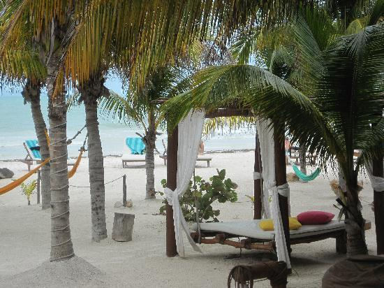 Casa las tortugas beach picture of holbox hotel casa las tortugas petit beach hotel spa - Holbox hotel casa las tortugas ...