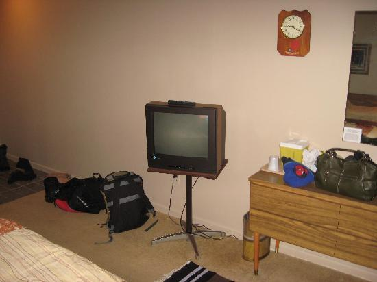 Snowdon Motel: TV and dresser