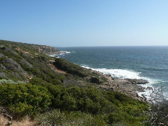 Margaret River Discovery Co. Tours : Willyabrup cliffs