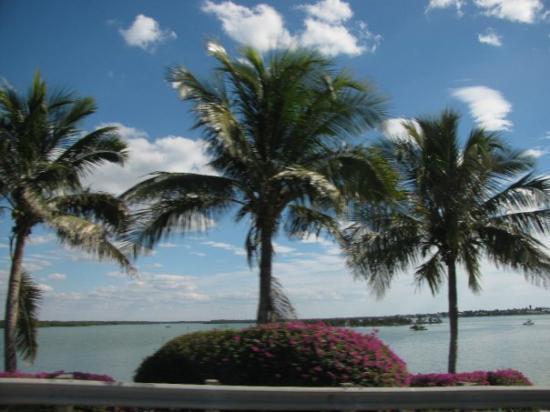 Marco Island Marina : Marco Island