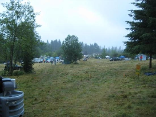Happy Valley, OR: Edge of the forest, looking out towards family/RV camping early Friday