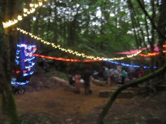 Happy Valley, OR: Woods stage all lit up