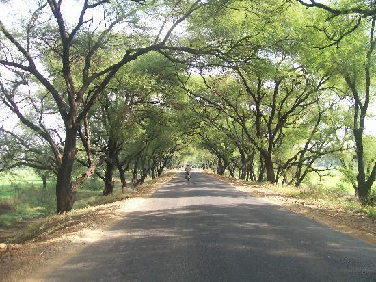 Lovely Road leading to Lonar from Jalana via Shinkhed