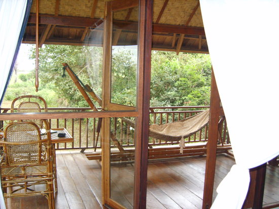 Kingfisher Ecolodge: la terrasse