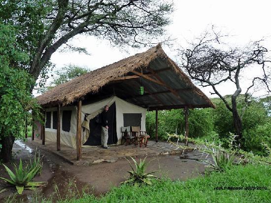 Serengeti Tented C& - Ikoma Bush C& Safari Tent at Ikoma Bush C& & Safari Tent at Ikoma Bush Camp - Picture of Serengeti Tented Camp ...