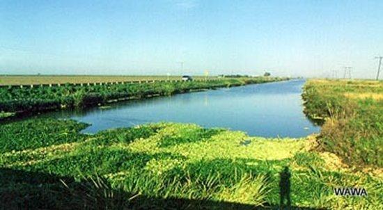 Floride : オキチョビー湖