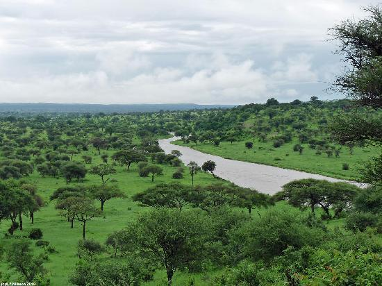 The view from Tarangire Safari Lodge