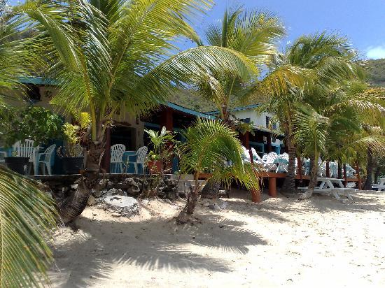 De Reef Apartments: one of the Beach bars at Lower Bay
