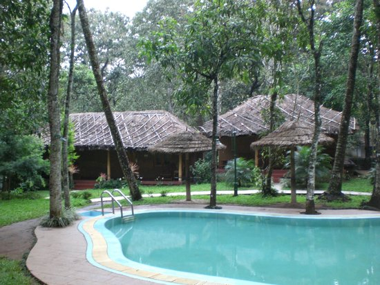 Thekkady - Woods n Spice, A Sterling Holidays Resort: pool
