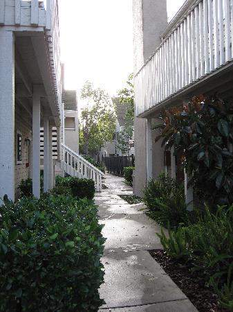 Residence Inn Oxnard River Ridge: Walkway by building towards fenced pool area