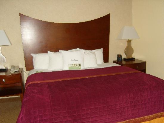 Doubletree by Hilton Hotel Murfreesboro: The bed