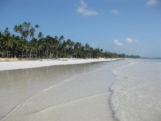 Galu Sea Lodge -Tamani: The beach