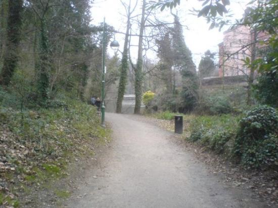 Nature walk at matlock baths derbyshire picture of - Matlock hotels with swimming pools ...