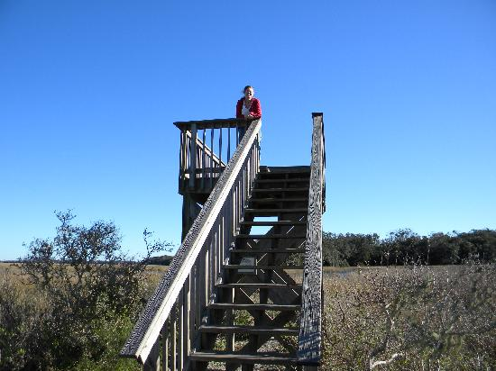 Theodore Roosevelt Area : Enjoying the sites from the Lookout