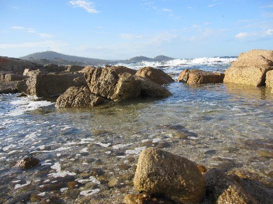 Bicheno Australia  city pictures gallery : Bicheno, Australia: The beach adjacent to the accommodation.