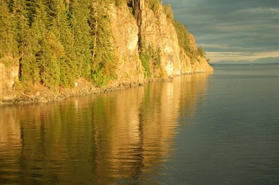 Campbell River, Canadá: A perfectly wonderful dive site.  If you think this is pretty, you should see it 70 feet under t