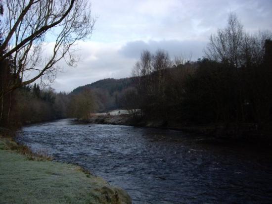 the River Avoca