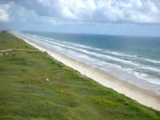 Sea Gull Condominiums : Beach