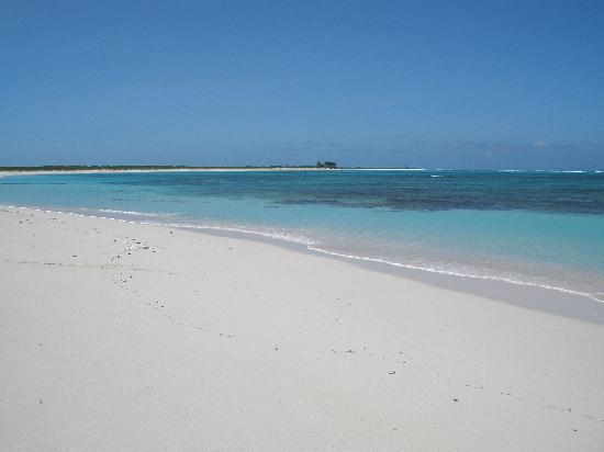 Neptune's Treasure : A beach in Anegada