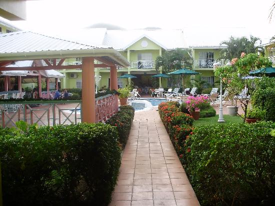 Bay Gardens Hotel : Grounds and Pool