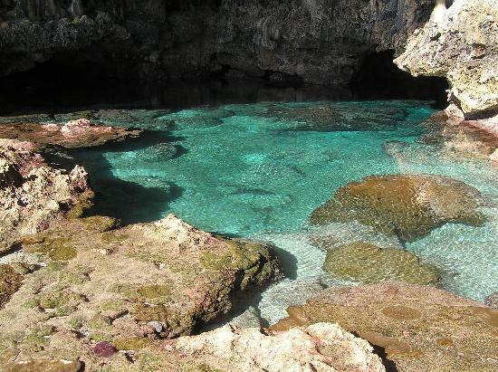 Coral Gardens: cavepool to snorkel in