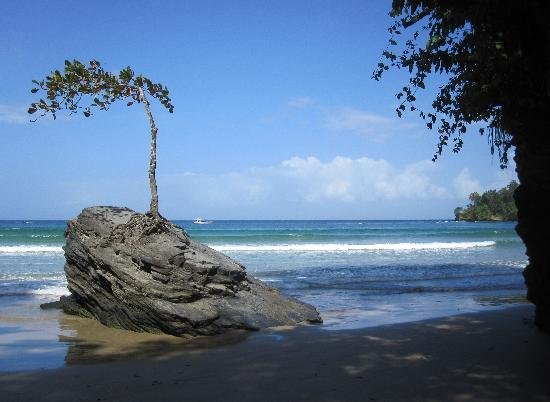 Las Cuevas Beach Lodge : Beautiful and interesting Beach