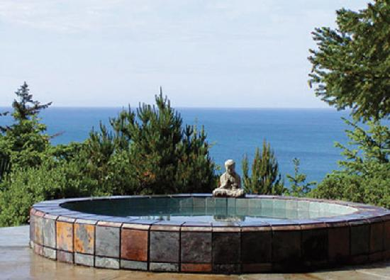 WildSpring Guest Habitat: Our open-air slate spa, with 1000 gals and 4 ft deep, overlooks the ocean