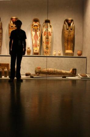 Musée des Beaux-Arts de Lyon : Musée des Beaux Arts de Lyon