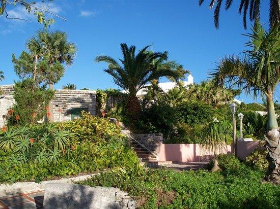 Bermuda foto