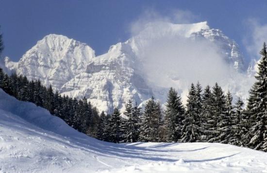 Schlick 2000 Fulpmes Picture of Fulpmes, Tirol TripAdvisor