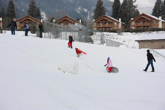 Dream House Suites: Lot of fun places to go sledding
