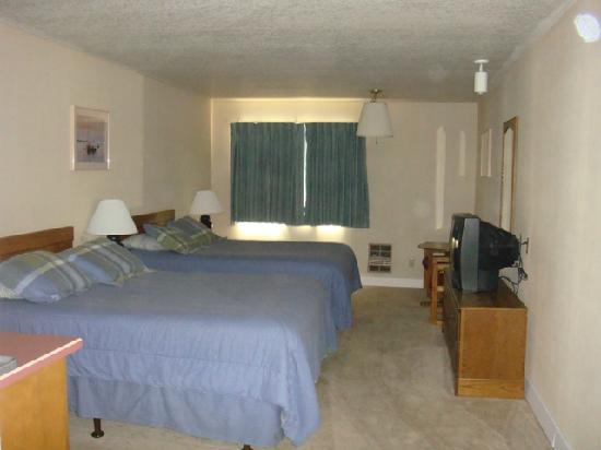 Aladdin Motor Inn: A 2 queen room