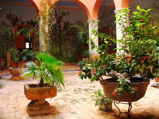 Hotel Casa San Angel: common area