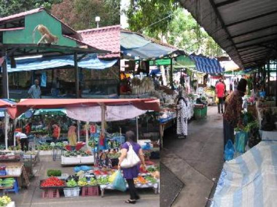 General View of the market